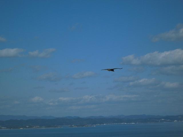 豊島に行ってきました