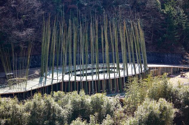 瀬戸内国際芸術祭|小豆島中山・ワン・ウェンチー作「オリーブの夢」